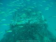malediven-2013-026