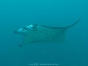malediven-2013-038