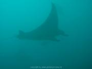 malediven-2013-039