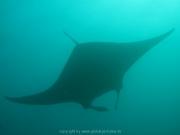 malediven-2013-043