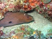 malediven-2013-075