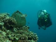 malediven-2013-080