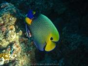 malediven-2013-170
