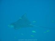 malediven-2013-238