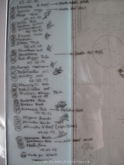 malediven-2013-272