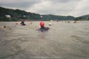 rheinschwimmen-bad-honnef-41