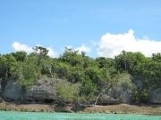 saona-island-11