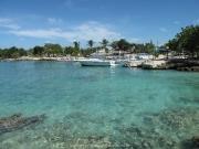 saona-island-04