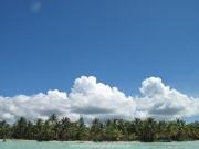 saona-island-18