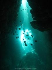 punta-cana-dive-35