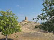 al-sawadi-oman-84