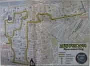 rosenmontag-2014-04