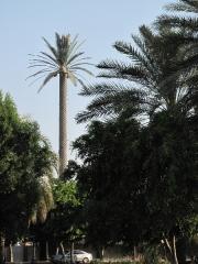 abu-dhabi-2014-096