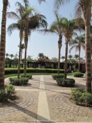 Hurghada 2015 - 003