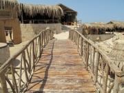Hurghada 2015 - 151