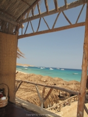 Hurghada 2015 - 157