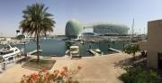 Abu Dhabi 2016 - 082