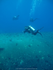 Soma Bay 09-2016 - 025