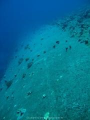 Soma Bay 09-2016 - 030