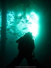 Bali-Dive-040