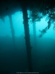 Bali-Dive-065