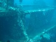Bali-Dive-070