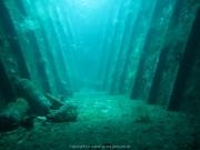 Bali-Dive-076