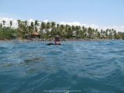 Bali-Dive-083