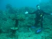Bali-Dive-092