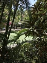 Bali-101