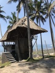 Bali-146
