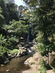 Bali-194