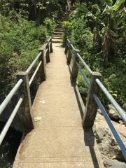 Bali-196