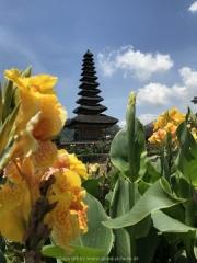Bali-211
