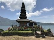Bali-212