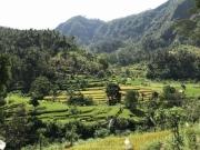 Bali-005