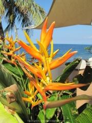 Bali-035