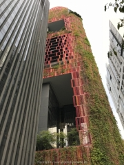 Singapore - 009