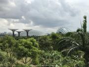 Singapore - 044