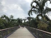 Singapore - 050