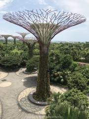 Singapore - 069