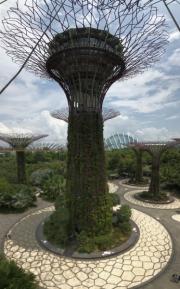 Singapore - 071