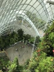 Singapore - 099