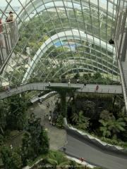 Singapore - 105