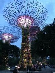 Singapore - 138