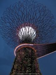 Singapore - 153