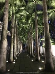 Singapore - 172