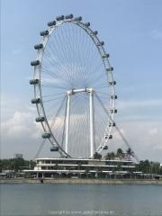 Singapore - 232