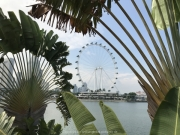 Singapore - 235