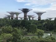 Singapore - 243